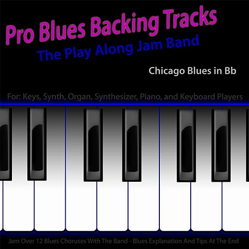 Pro Blues Backing Tracks (Chicago Blues in Bb) [For Keys, Synth, Organ, Synthesizer, Piano and Keyboard Players] by The Play Along Jam Band