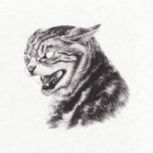 Beta Cat fra Great Dane