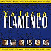 Yo Sueno Flamenco de Various Artists