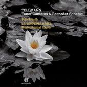 Telemann: Tenor Cantatas & Recorder Sonatas by Various Artists