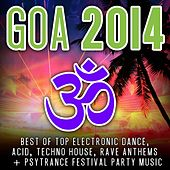 Goa 2014 (Top 30 Best of Top Electronic Dance, Acid, Techno, House, Rave Anthems, Psytrance) by Various Artists
