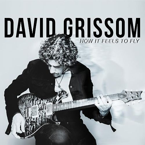 How It Feels to Fly by David Grissom