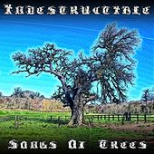 Indestructible by Songs Of Trees