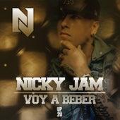 Voy A Beber de Nicky Jam