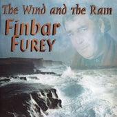 The Wind and the Rain by Finbar Furey