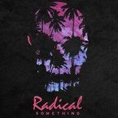 Long Way Home (DJ Big Red & Icebird Remix) by Radical Something
