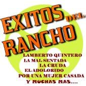 Exitos del Rancho by Mariachi Arriba Juarez