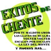 Exitos de Chente by Mariachi Arriba Juarez