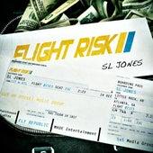 Flight Risk by Sl Jones