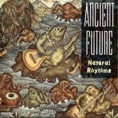Natural Rhythms by Ancient Future