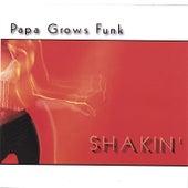Shakin' by Papa Grows Funk