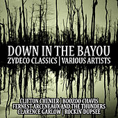Down in the Bayou:Zydeco Classics,Various Artists de Various Artists