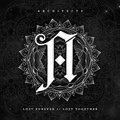 Lost Forever // Lost Together de Architects