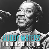 The Blues Collection: Muddy Waters de Muddy Waters