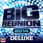 The Big Reunion 2014 by Various Artists