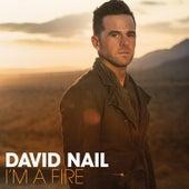 I'm a Fire de David Nail