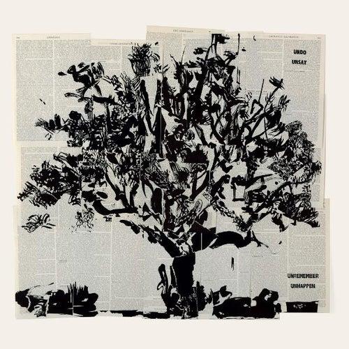 Cassette Locale After Masanobu Fukuoka by Derek Gripper