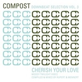 Compost Downbeat Selection Vol. 3 - Cherish Your Love - Moody Twilight Vibes - compiled & mixed by Various Artists