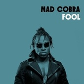 Fool by Mad Cobra