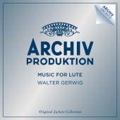 Music For Lute de Walter Gerwig