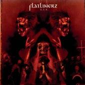U.S.A. by Flatlinerz