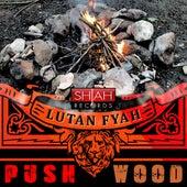 Push Wood - Single by Lutan Fyah