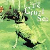 Three Legged Dog by Cruel Sea