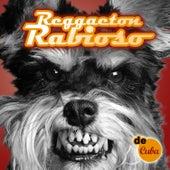 Reggaeton Rabioso by Various Artists