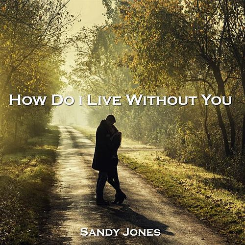 How can i live without you song