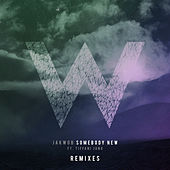 Somebody New - Remixes by Jakwob