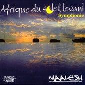 Afrique du soleil levant (Symphonie) von Mamadou Barry