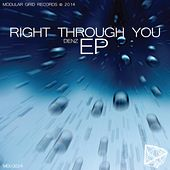 Right Through You - Single by Denz