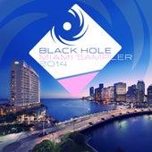 Black Hole Miami Sampler 2014 von Various Artists