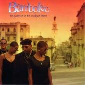 Te Gusto O Te Caigo Bien by Bamboleo