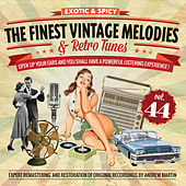 The Finest Vintage Melodies & Retro Tunes Vol. 44 by Various Artists
