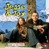 Esta es mi vida de Jesse & Joy