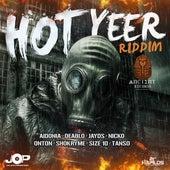 Hot Yeer Riddim by Various Artists
