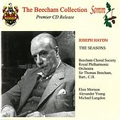 Haydn: The Seasons (The Beecham Collection) by Various Artists