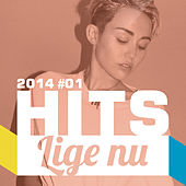 HITS lige nu 2014#01 by Various Artists