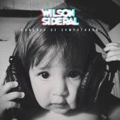 Canções de Computador de Wilson Sideral