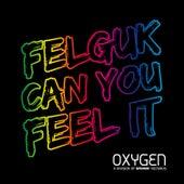 Can You Feel It di Felguk