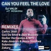 Can You Feel the Love (Remixes) de DJ Valdi