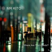 Where Are the Lizards? by Mr Kito