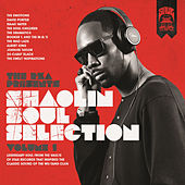 The Rza Presents Shaolin Soul: Vol 1 de Various Artists