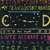 My Translucent Hands by I Start Counting