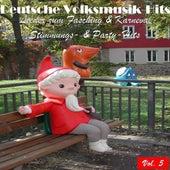 Deutsche Volksmusik Hits - Lieder zum Fasching & Karneval: Stimmungs- & Party-Hits, Vol. 5 by Various Artists
