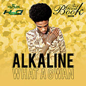What A Gwan - Single von Alkaline