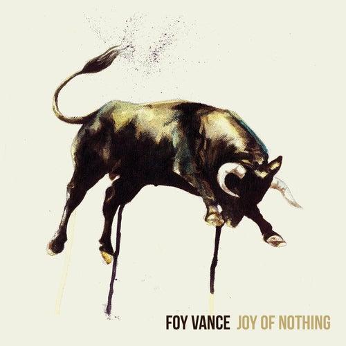 Joy Of Nothing by Foy Vance