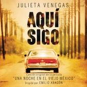 Aquí Sigo de Julieta Venegas