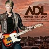 Como Empezar de Nuevo de Andres De Leon